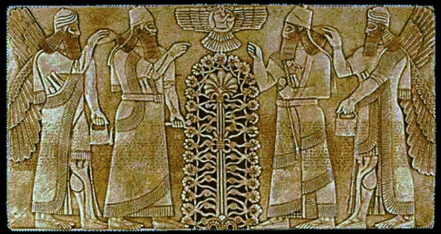 Anunnaki  Sumerians and the Tree