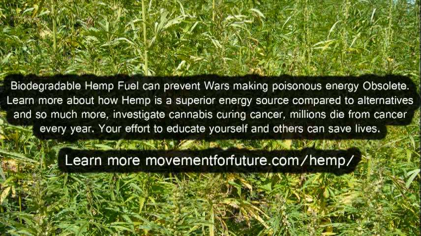 Hemp_Fuel_can_prevent_Wars_making_poisonous_energy_Obsolete__155598