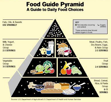 food pyramid buildchopped