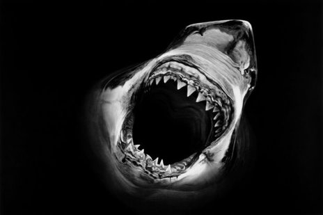 UN-AFFORDABLE CARE ACT PT. 3: PRICE INCREASES! ACA Entering The Jaws Phase